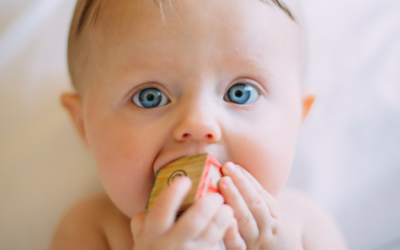 Introducing Solids: What The Science Says